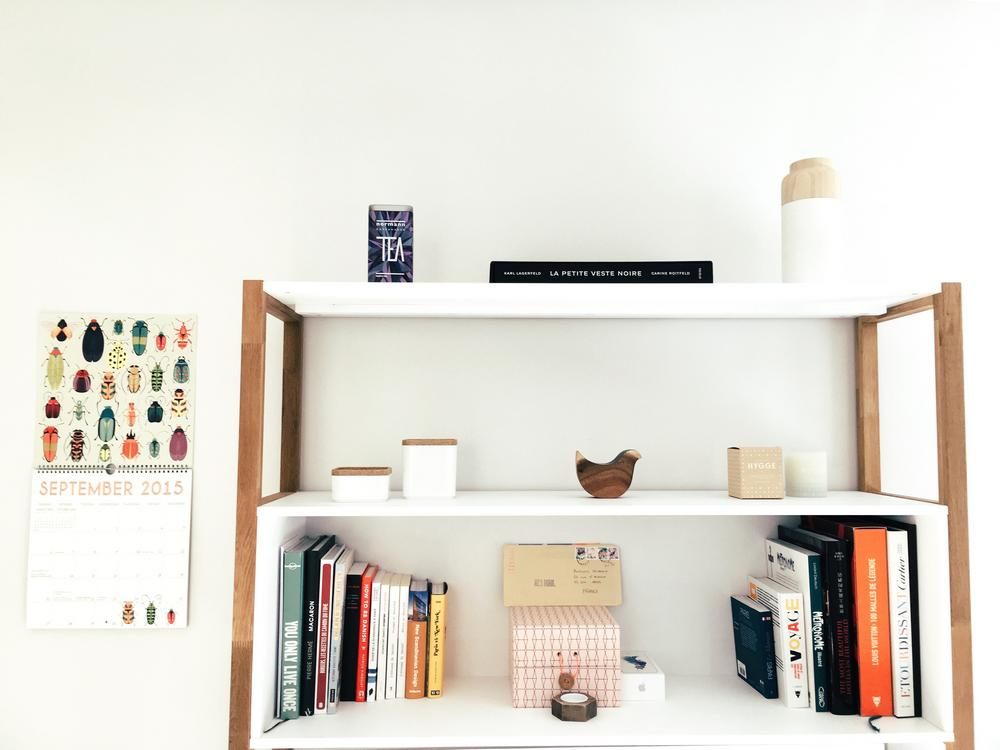 Ideas_Bookshelf